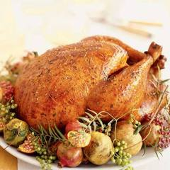roast-turkey[1].jpg